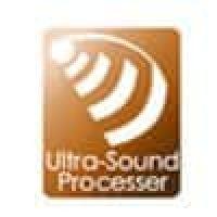 Ultrasound processor